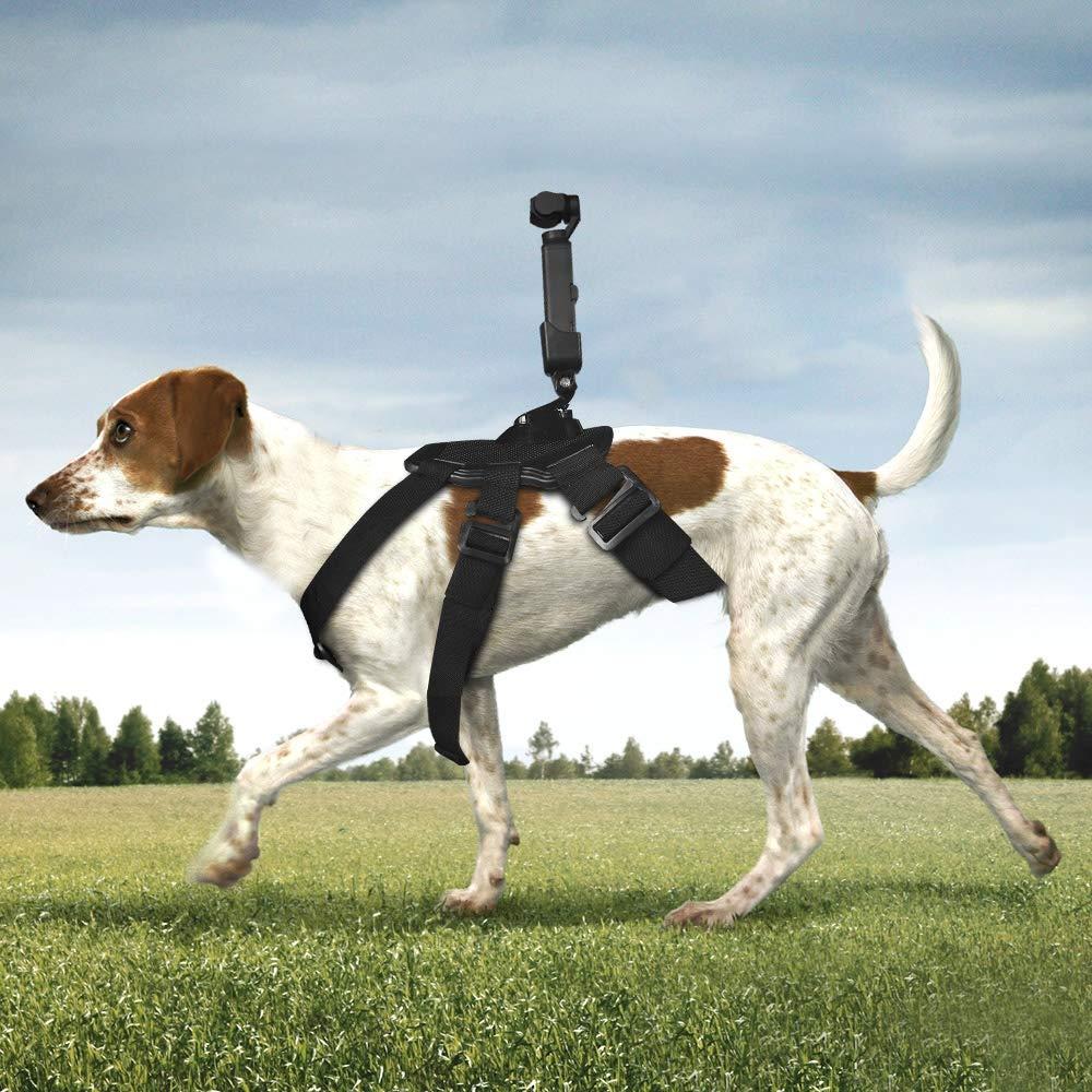 DJI OS,MO Pocket Accesorios DJI Dog Fetch Hound Arnés Correa de ...