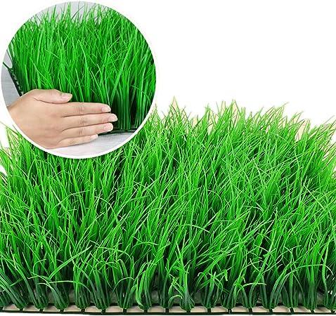 Valla Artificial Durable 12 Piezas Artificial Boj Pantalla Paneles De Privacidad Con Protección UV Valla Cubierta Paredes Patio Patio Jardín Al Aire Libre Verdor Verde Estancia Durante todo el año: Amazon.es: Hogar