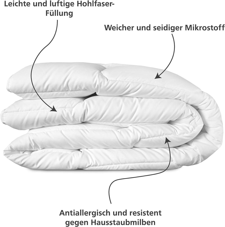 240x220 cm leichte /& praktische vierjahreszeiten Decke Wendre 4 Jahreszeiten Bettdecke f/ür Jede Temperatur Pflegeleicht /& Maschinenfest Besteht aus 2 hypoallergenen Steppdecken