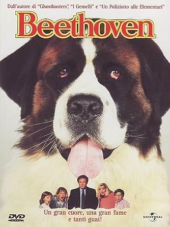 Beethoven 1 Amazonit Grodinhunt Film E Tv