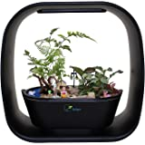 INTELLIGENT INDOOR LED LIGHT GARDEN By Spigo, With Self-Timing and Self Watering Technology, Great for Growing Fresh Herbs, Small Plants, and Also Makes A Great Gift, Sleek Matte Black Finish