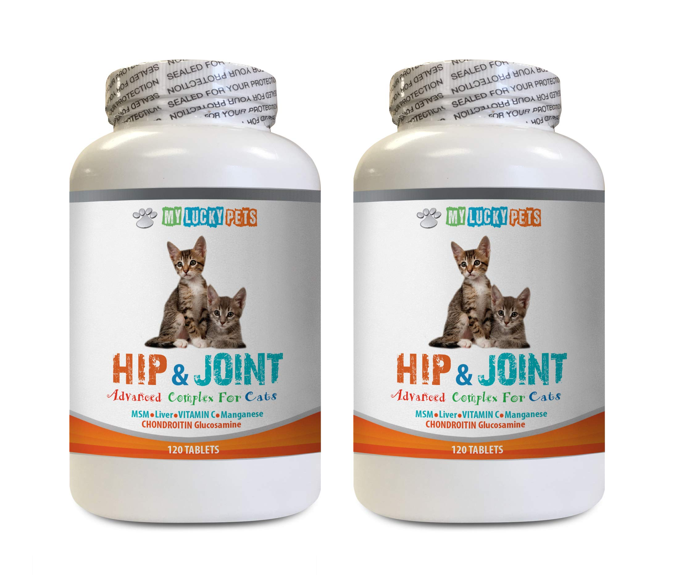 cat mobility aid - CAT HIP AND JOINT COMPLEX - INCREASE MOBILITY AND REDUCE JOINT STIFFNESS - IMMUNE SUPPORT - VET APPROVED - glucosamine chondroitin cat treats - 2 Bottles (240 Tabs) by MY LUCKY PETS LLC (Image #1)