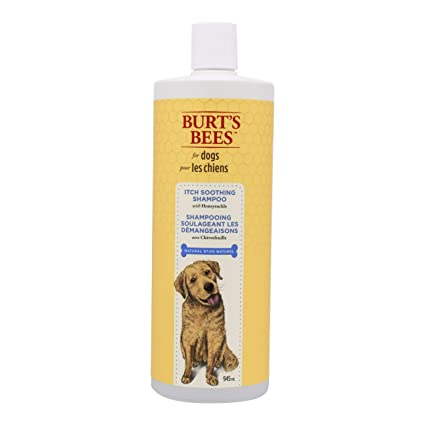 e4ed43ced Amazon.com  Burt s Bees For Dogs Natural Itch Soothing Shampoo with ...