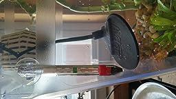 Amazon Com Hydor 7 5w Slim Heater For Bettas And Bowls