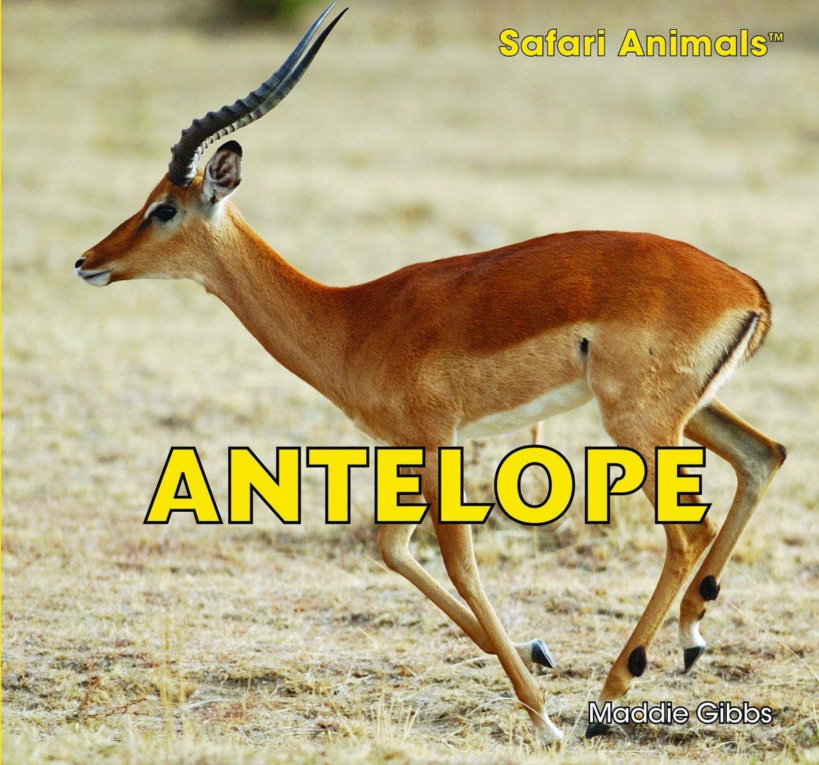Antelope (Safari Animals) pdf epub