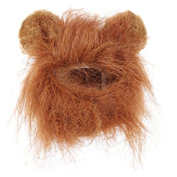 Wenquan,Cuello de Peluca de Gato Divertido león Mascota Oreja ...