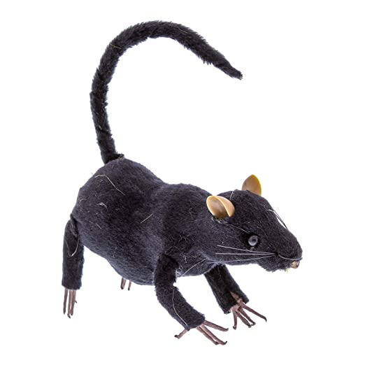 Things, Rodent hairy tail grey
