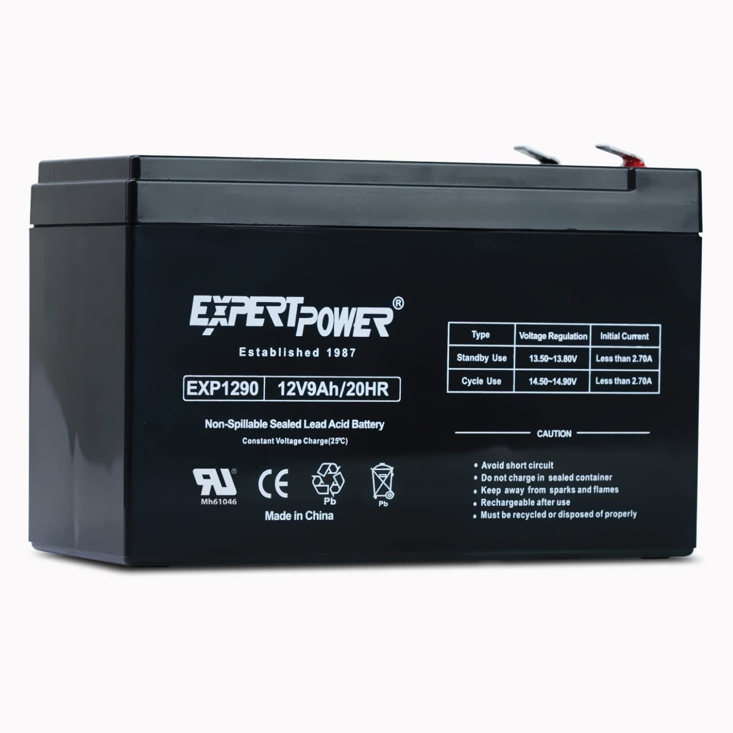 ExpertPower EXP1290 12 Volt 9 Amp Rechargeable Battery