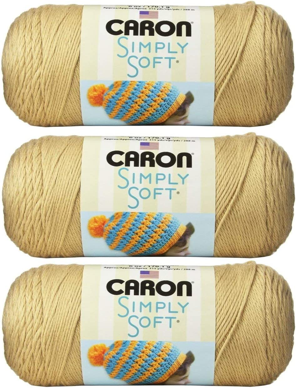 Caron CSS5753 Simply Soft Brites-Pack of 3 Balls-170g Each Ball-Berry Blue