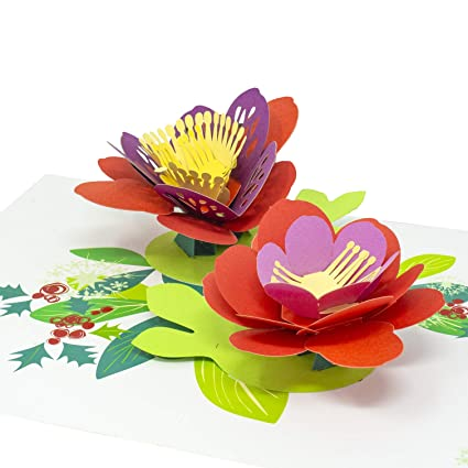 Amazoncom Paper Love Lotus Flower Pop Up Card 3d Popup Greeting