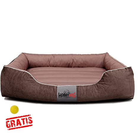 Hobbydog Exclusive szrjbr2 + Ball Gratis Cama para Perros ...