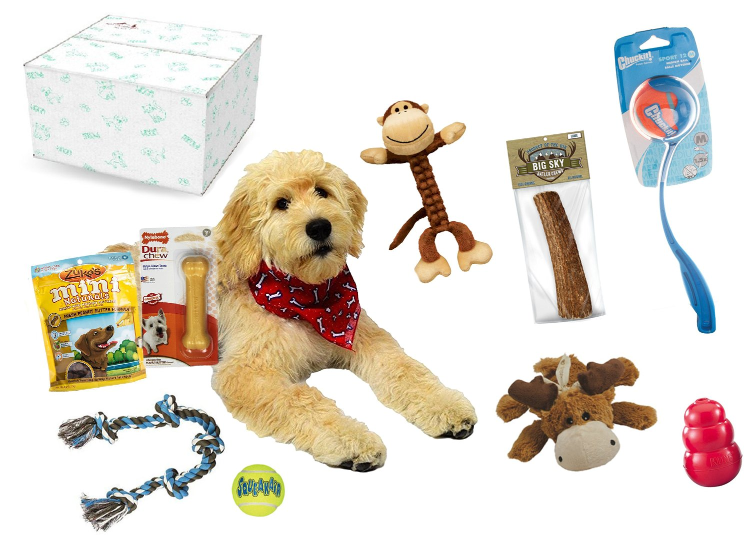 Dog Gift Box / Dog & Puppy Gift Set -- Perfect as an Adult Dog Toys & Treats Starter kit - Contains Top Names like Zukes Chuckit and Kong!