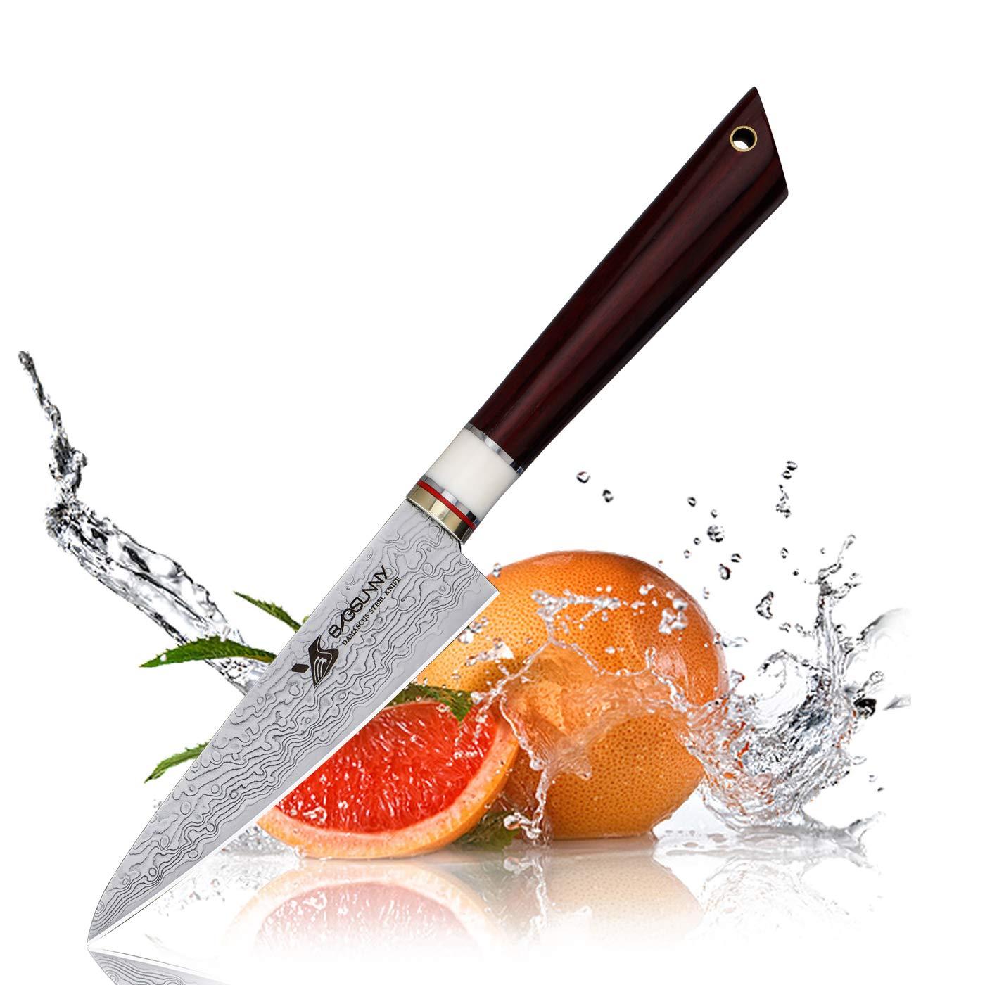 MSY BIGSUNNY 3.9'' Fruit Knife - Damascus Kitchen Slicing Knife - Super Damascus Stainless Steel Cutting Core Blade - Raindrop Damascus Pattern - Big Leaf Sandalwood Handle