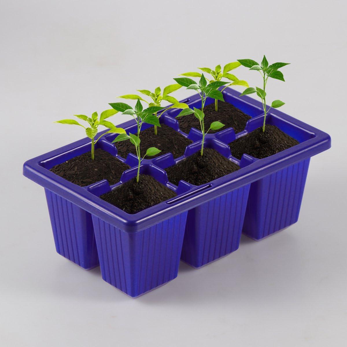 6/cellule per pianta Bestomz blu 10/Vaschette per germinazione piantine
