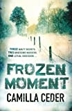 Frozen Moment: 'A good psychological crime novel that will appeal to fans of Wallander and Stieg Larsson' CHOICE