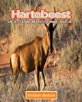 Hartebeest: Fun Facts and Amazing Photos of Animals in Nature