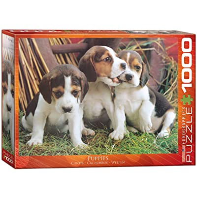 EuroGraphics Puppies Puzzle (1000-Piece): Toys & Games