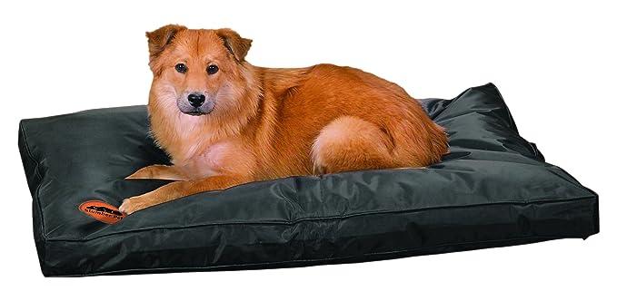 Amazon.com: Tough cama para perro, Negro: Mascotas