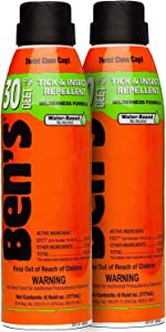 Ben's 30 Insect Repellent Spray 6 oz (Pack of 2)