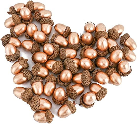 5Pcs Assorted Natural Acorns With Caps Thanksgiving Holiday Craft Decoration