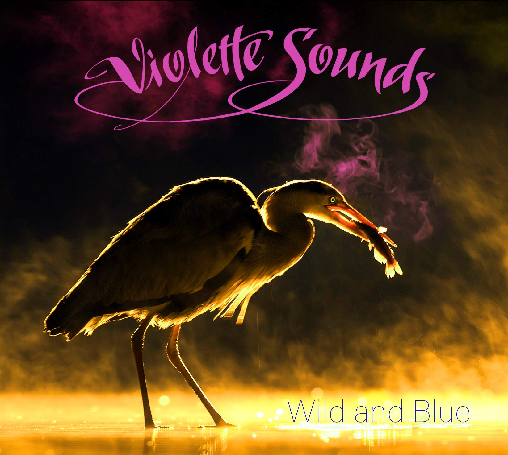 CD : Violette Sounds - Wild & Blue (CD)
