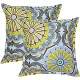 Creative 26x26 Inches Cotton Euro sham / Pillow Cover, Kalyan, Set of 2