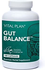 Vital Plan Gut Health Supplement - Dr. Bill Rawls Advanced Digestive Health Support Formula w/ Slippery Elm Bark, Berberine & Dandelion Extract for Women & Men