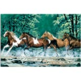 Tree-Free Greetings Eco Notes 12 Count Notecard Set with Envelopes, 4x6 Inches, Spring Creek Run Themed Horse Lovers Art (66525)