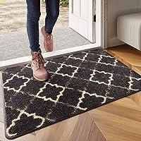 DEXI Original Indoor Doormat, Durable Absorbent Door Mats Indoor Rug, 32x20 Machine Washable Low-Profile Inside Door Mat for Entryway
