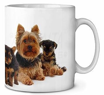 Yorkshire Terrier Hunde Kaffeetasse Geburtstag Weihnachtsgeschenk