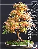 Harry Harrington's Bonsai Inspirations 2 (Spanish Edition)
