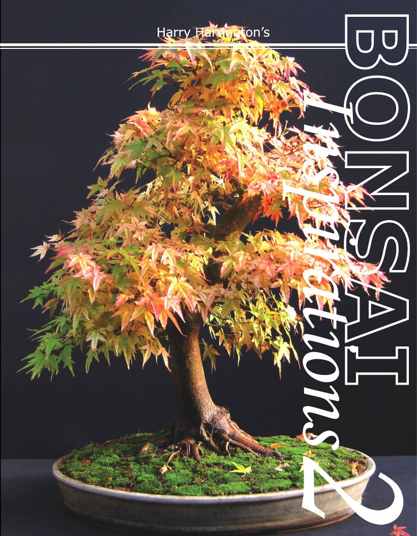 Harry Harringtons Bonsai Inspirations 2 product image