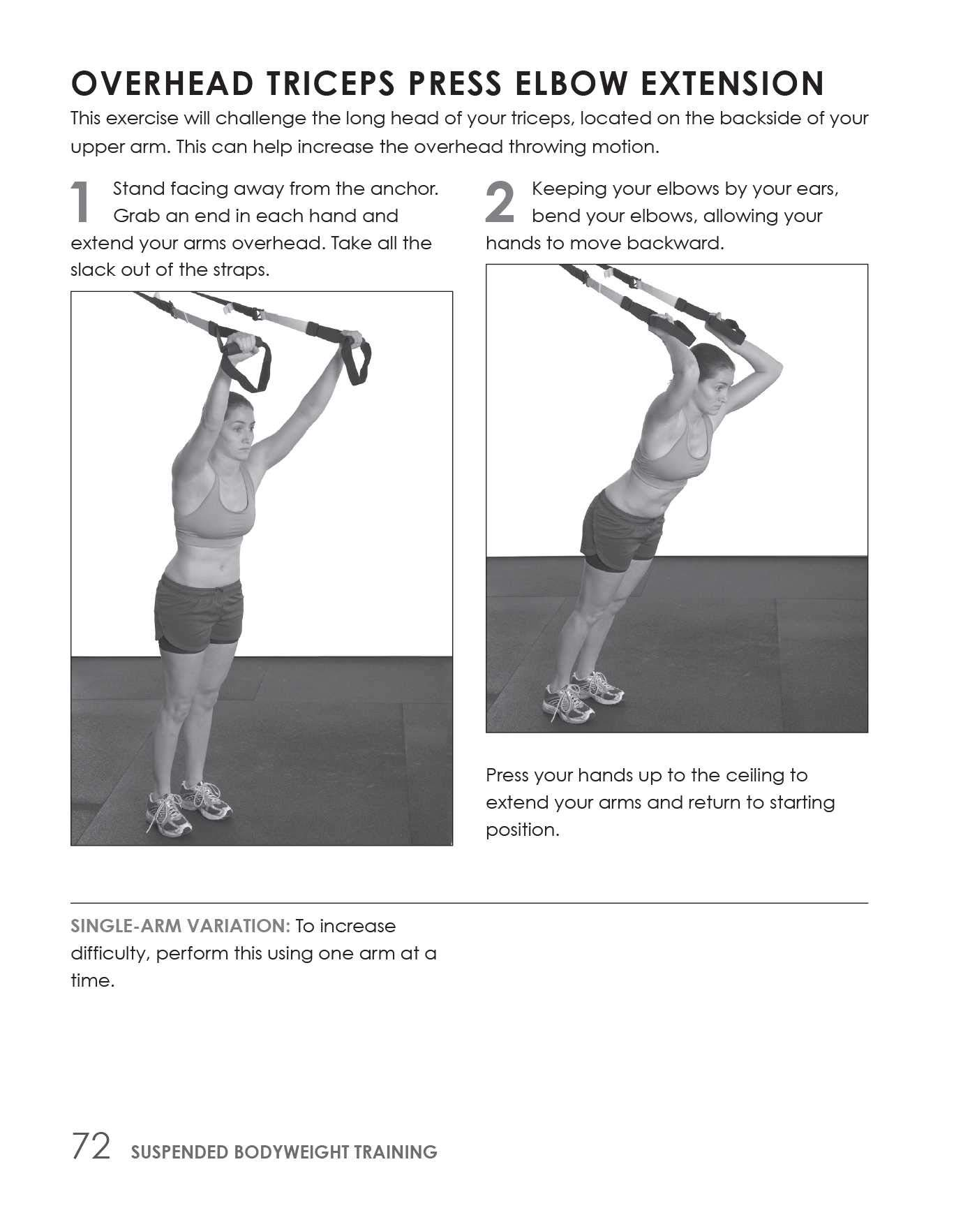 Suspended Bodyweight Training: Workout Programs for Total ...