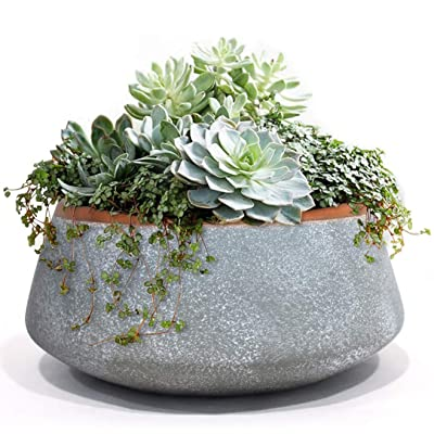Large Succulent Planter Pots - Ceramic Indoor Outdoor Garden Pot with Drainage for Plant Flower, 8 Inch, Gray : Garden & Outdoor