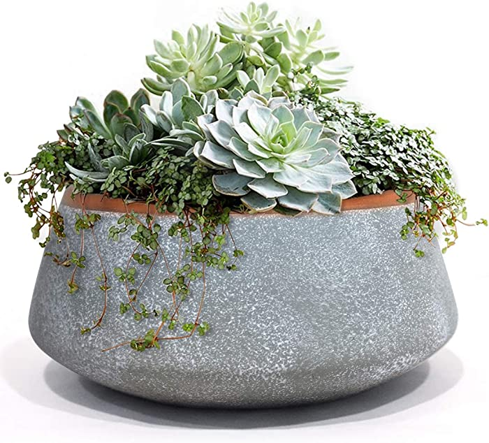 LA JOLIE MUSE Large Succulent Planter Pots - Ceramic Indoor Outdoor Garden Pot with Drainage for Plant Flower, 8 Inch, Gray