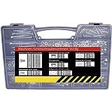 SECOTEC Gewindeschrauben-Sortiment   560-teilig   Sechskantschrauben, Flachrundschrauben & Muttern im praktischen Koffer   hochwertiger Stahl verzinkt