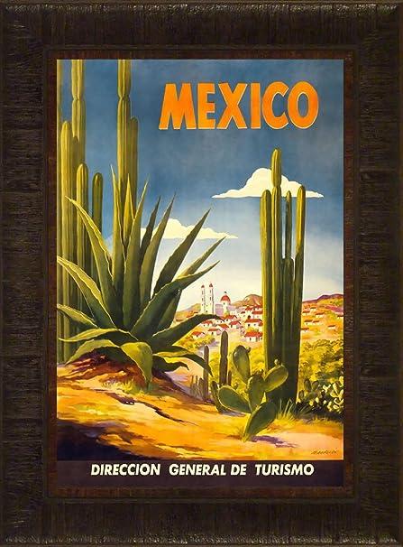 Amazon.com: Mexico Cacti 23.5x17.5 Travel Poster Cactus Desert ...