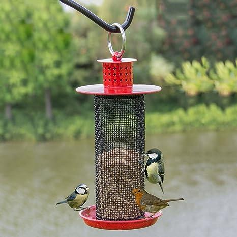 Al Aire Libre Pájaro Colibrí Alimentador Con Metal Techo Perfecto Para Jardín Decoración Y Observación De Aves Para El Amante De Las Aves. Cacoffay,Red: Amazon.es: Deportes y aire libre