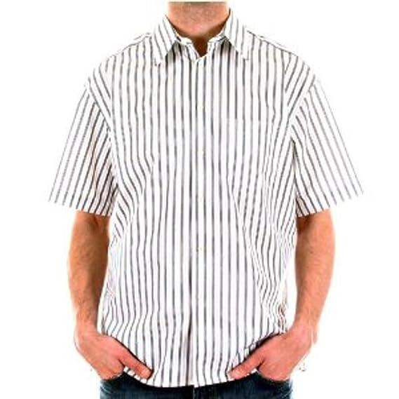 8a477ecebb0 BURBERRY mens Short Sleeve shirt  Amazon.co.uk  Clothing