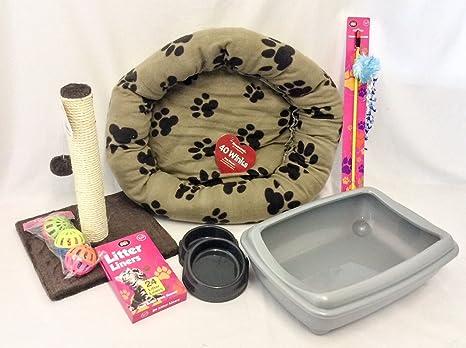 Kit de bienvenida para gatos y gatitos, incluye iglú y arenero abierto
