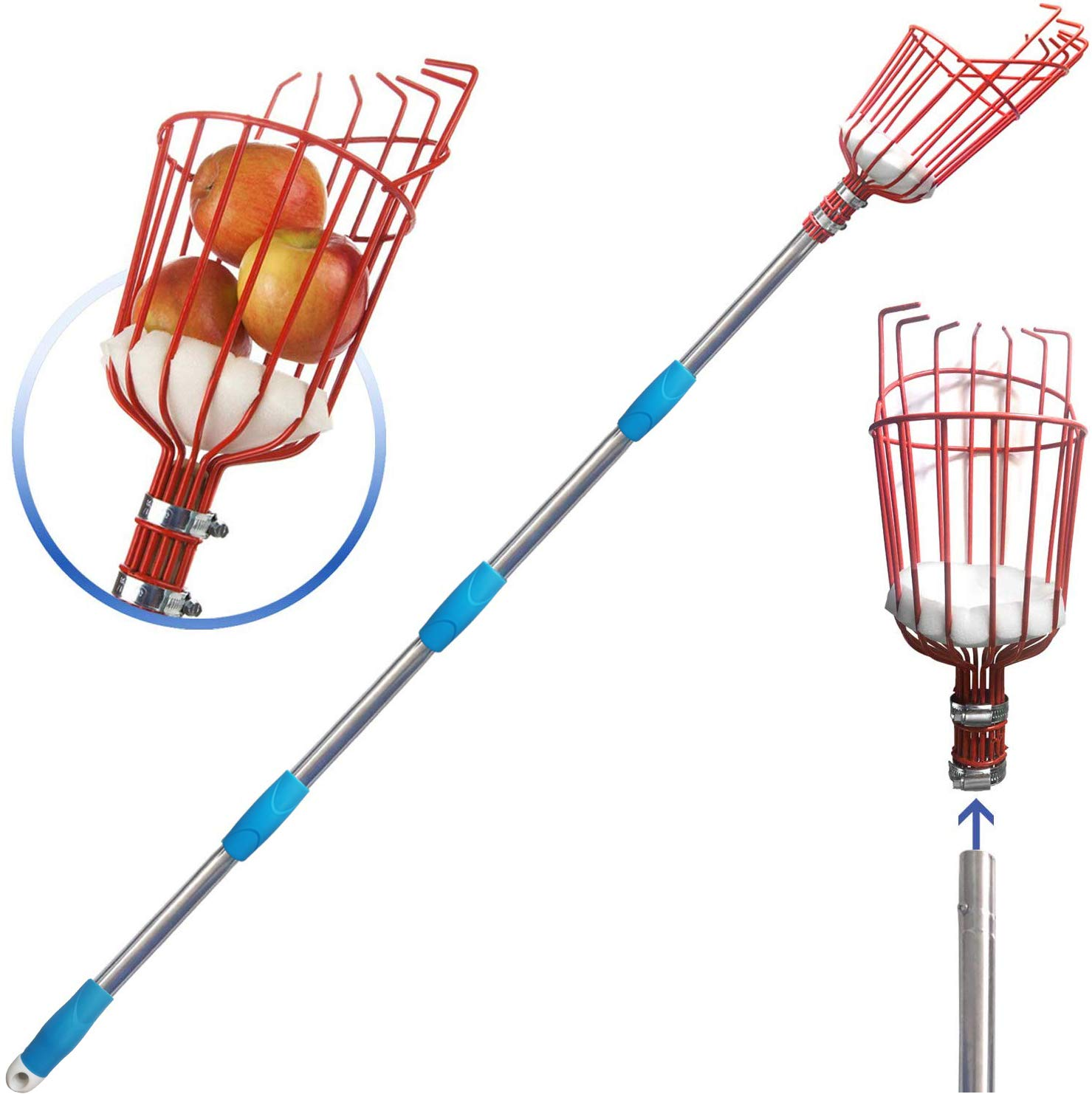 COCONUT Fruit Picker Tool, Fruit Picker with Basket and Pole,Easy to Assemble Use Fruits Catcher Tree Picker for Getting Fruits 5.5ft