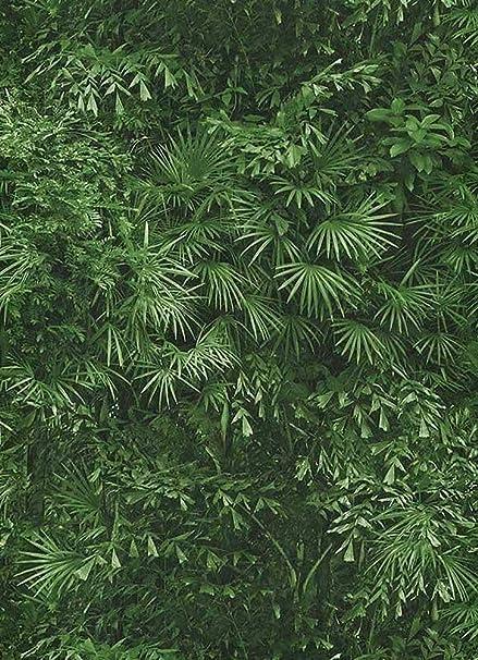 Tropical Leaf Jungle Wallpaper Leaves Forest Textured Paste