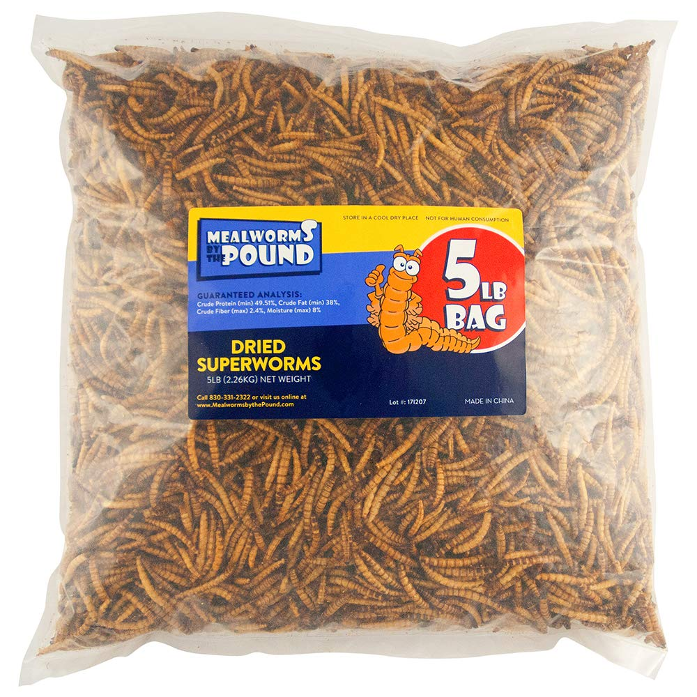 Mealworms by the Pound MBTP Bulk Dried Superworms - Treats for Chickens & Wild Birds (5 Lbs) by Mealworms by the Pound