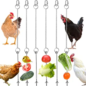Patelai 6 Pieces Stainless Steel Hanging Feeder Chain Veggies Skewer Fruit Vegetable Holder with Chain for Hens Pet Chicken Birds Feeding Tools