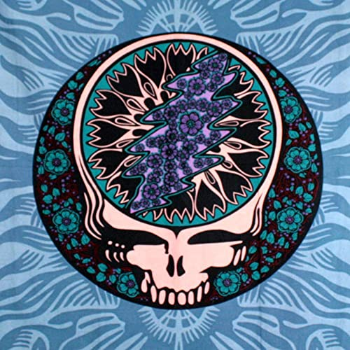 Sunshine Joy Grateful Dead Blue Steal Your Face Tapestry Wall Art Beach Sheet Huge 60×90 Inches