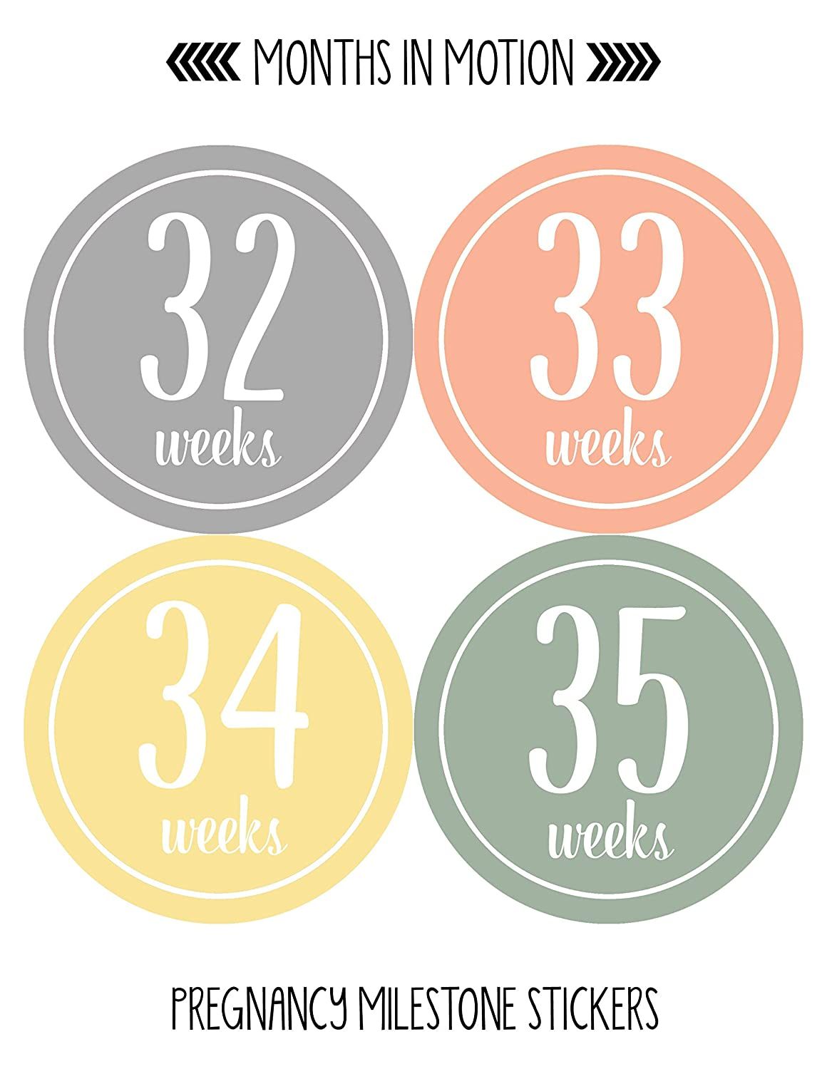 Amazon com : Months In Motion Pregnancy Week by Week Belly