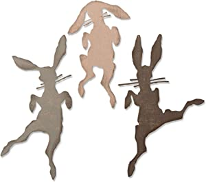 Sizzix Thinlits Die Set 3 Pack Bunny Hop by Tim Holtz, Multicolor