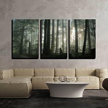 Amazon Com Wall26 Foggy Forest Canvas Art Wall Art 16 X24 X3 Panels Posters Prints