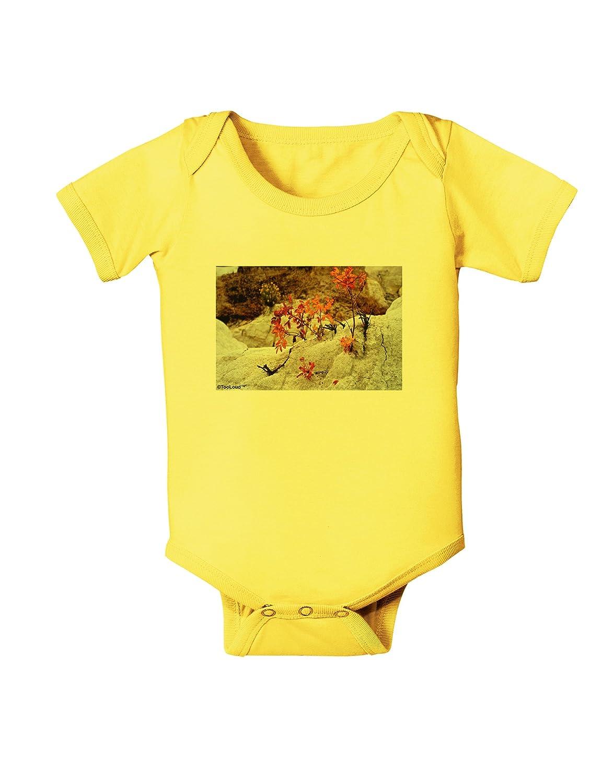 TooLoud CO Painted Mines Baby Romper Bodysuit
