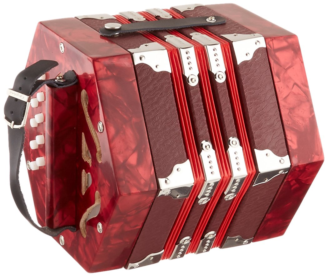 Johnson FI-120 Concertina - 20 Button Anglo Style